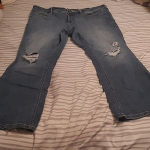 Torrid Bootcut Distressed Jean's Size 22